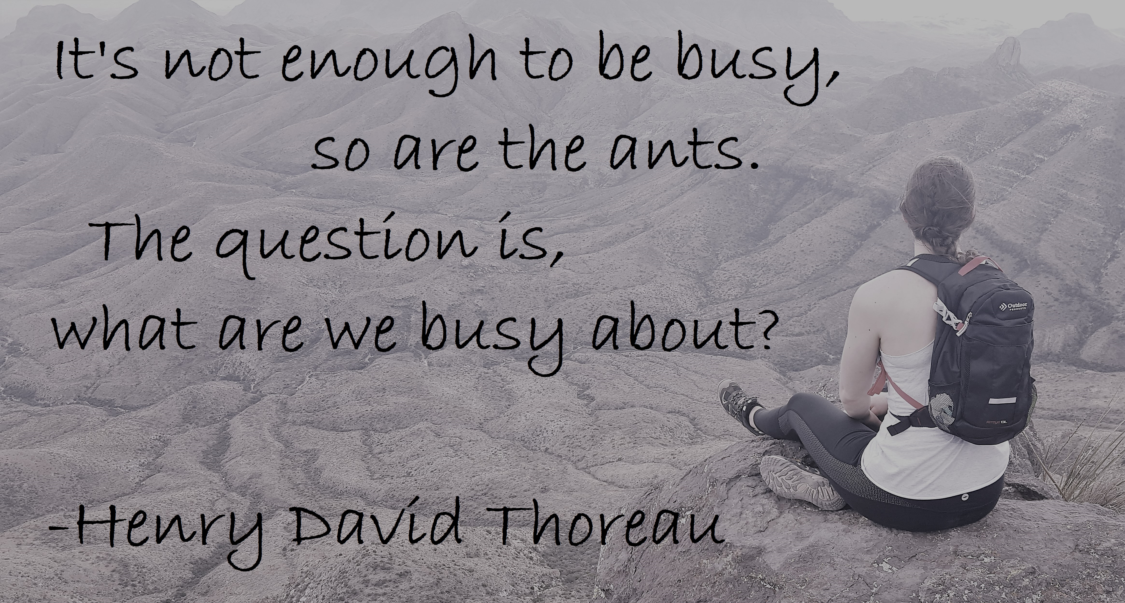 Henry David Thoreau - Not enough to be busy