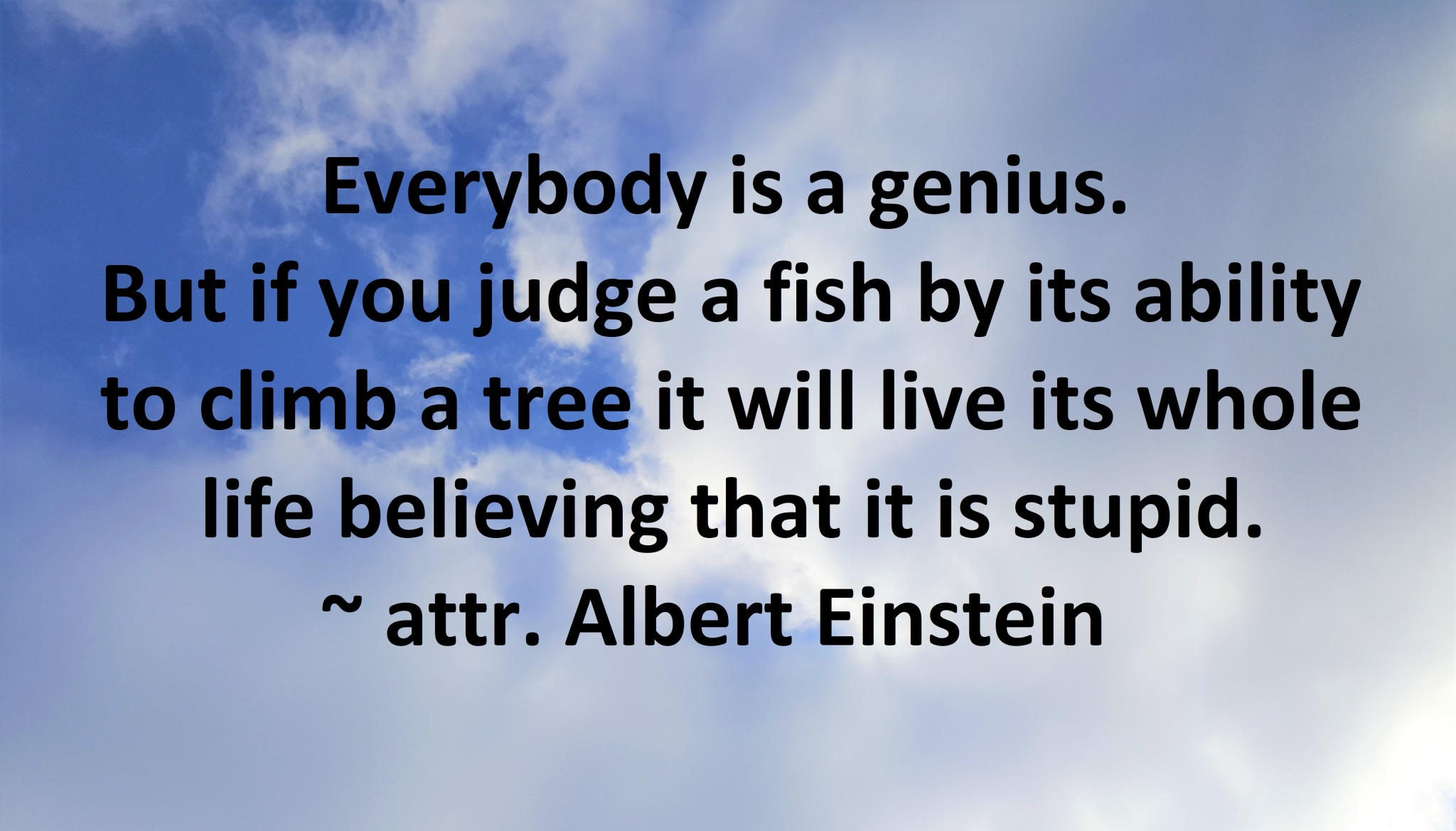 Albert Einstein - Everybody is a genius