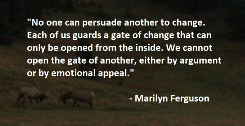 Marilyn Ferguson - cannot persuade others to change