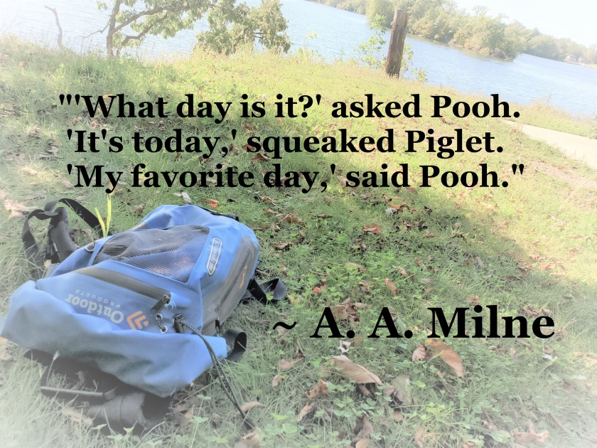 A A Milne - My Favorite Day