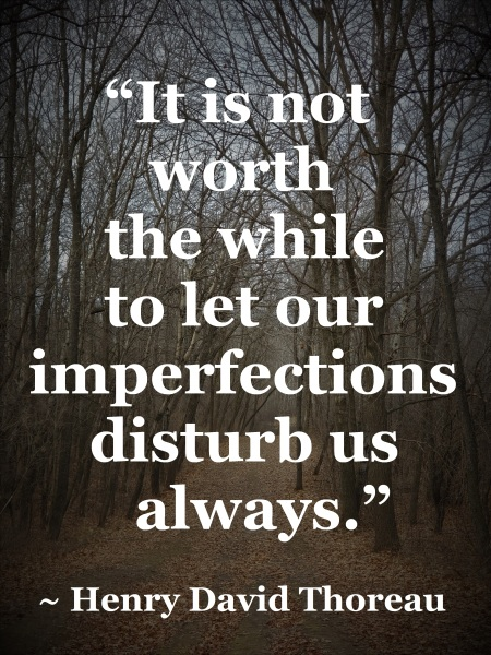 Henry David Thoreau - not worth while to let our imperfections disturb us always