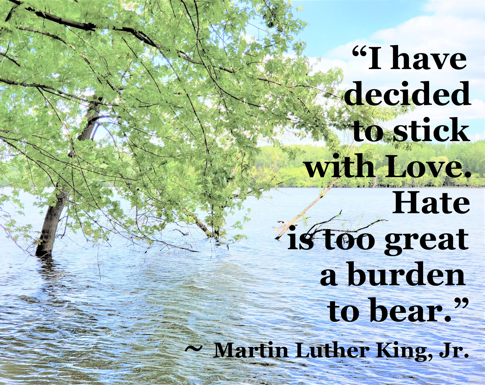 Martin Luther King Jr - stick with love hate too great a burden
